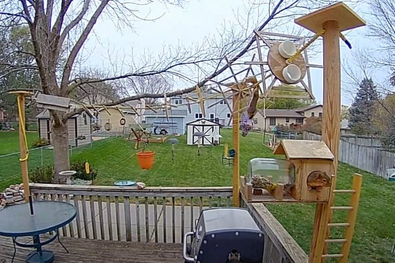 A yard with a car and a swing set and a car parked in the back