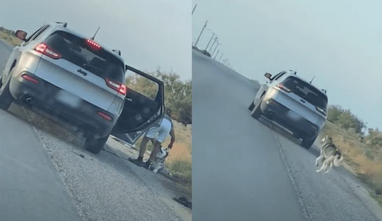 A car crashed into a car